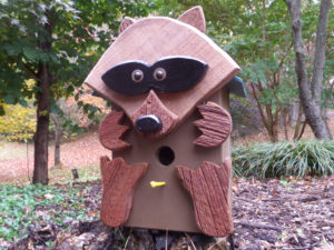 Raccoon Bluebird Box